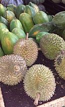 Halbtagesausflug Denpasar für Foodies