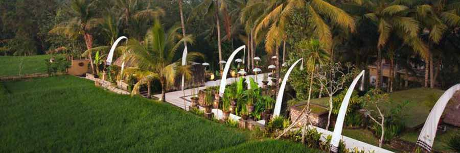 Hotel Wapa Ume Bali © Wapa di Ume Ubud Resort & Spa