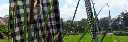 Indonesien Bali Ausflugstipps © B&N Tourismus