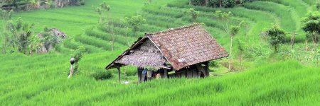 Indonesien Individualreisen © B&N Tourismus
